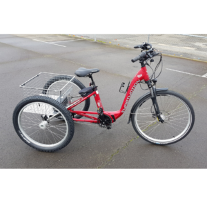 red smartmotion adult trike